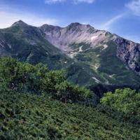 南アルプス「仙丈ケ岳」