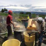 観光㈱山小屋手造り味噌 今年の仕込み風景