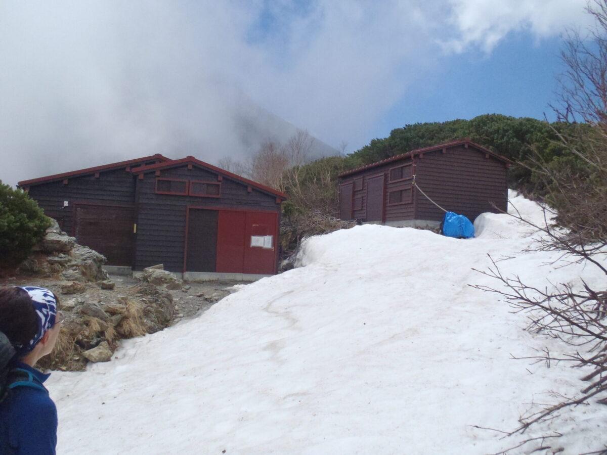 6月上旬の塩見小屋の様子